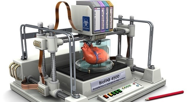 Imprimir rganos humanos con impresoras 3d for Videos de impresoras 3d